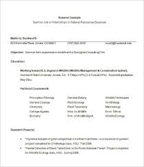 Marketing Intern Resume Resume Template For Internship Resume Example Template Example