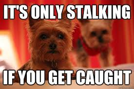 Stalking Memes - 18 stalking meme that will not creep you out sayingimages com