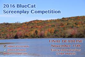 Fall Meme - fall meme nov 15 bluecat screenplay competition