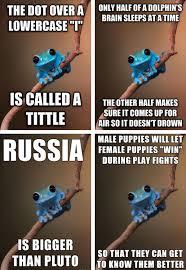 Fact Frog Meme - small fact frog is the best advice animal meme smart pinterest