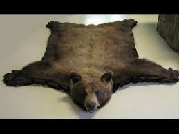 bear rug bear rug decorating ideas youtube