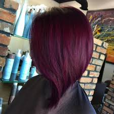 hair colours 20 plum hair color ideas for your next makeover 2018 update