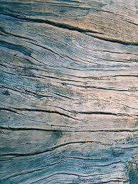 wood pictures best 25 wood grain texture ideas on wood grain wood