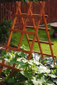 Make Your Own Cucumber Trellis Five Reasons To Grow Cucumbers On A Trellis And Taking Up Less