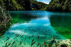 top 30 most beautiful places to visit in the world 23 u2013 plitvice
