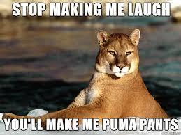 Make Me A Meme - stop making me laugh you ll make me puma pants meme