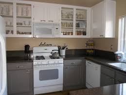 Black Paint For Kitchen Cabinets by Painting Kitchen Cabinets Grey And White Awsrx Com