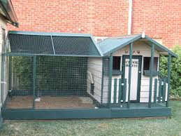 backyard poultry forum u2022 view topic what do you think of my