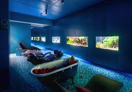 google zurich google s quirky but fascinating offices gsm nation bloggsm