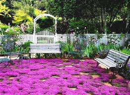 ideas perennial flower garden design designs for full sun cicaki