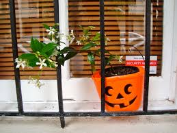 Halloween Cakes To Buy Pumpkin Apple Streusel Cake The Shortlists