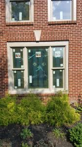 window wednesday for jfk window and door for andersen windows in
