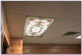 Drop Ceiling Light Panels Decorative Drop Ceiling Tiles 2x4 Tiles Home Decorating Ideas