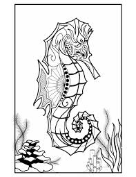 sea horse coloring pages virtren com