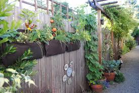 hanging vegetable garden on fence garden design ideas