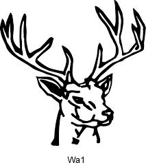 buck head cliparts free download clip art free clip art on