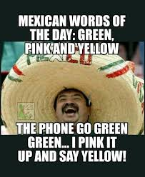Meme Pink - 31 mexican word of the day memes that are funny in every language