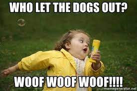 Who Let The Dogs Out Meme - who let the dogs out woof woof woof little girl running