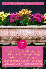 10 organic micro garden hacks freecycle usa