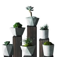 succulent planter aliexpress com buy full set 6pcs cement flowerpot succulent