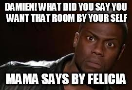 What The Hell Meme - kevin hart the hell meme imgflip