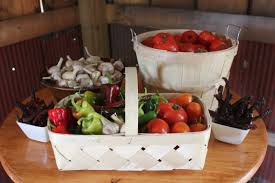 the basics of companion planting in a vegetable garden