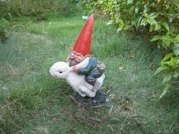 best 25 garden gnomes ideas on garden gnomes