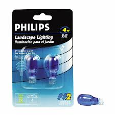 shop philips 2 pack incandescent decorative light bulbs at lowes com philips 2 pack incandescent decorative light bulbs