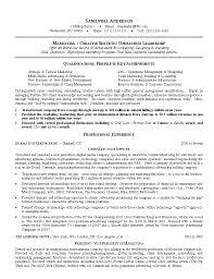 Resume Sample For Marketing Executive Resume Templates Marketing Cbshow Co