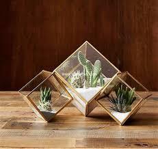 charming diy ideas for succulent terrariums diy motive