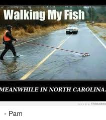North Carolina Meme - 25 best memes about meanwhile in north carolina meanwhile in