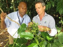 Cairns Botanical Garden by Gardens Partnership Helps Sister City Flourish Cairns Regional