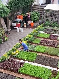 kitchen garden ideas garden ideas vegetable garden soil raised vegetable garden plans