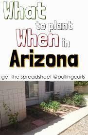 Types Of Vegetables To Grow In A Garden - best 25 arizona gardening ideas on pinterest desert gardening