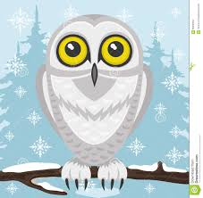 snowy owl clipart cartoon pencil and in color snowy owl clipart