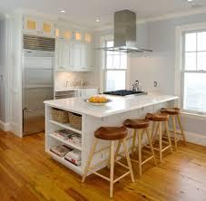 Modern Condo Kitchen Design Kitchen Design How Much To Renovate A Kitchen Modern Condo