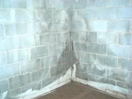 b dry basement bdry basement home interior ekterior ideas