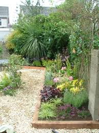 Backyard Plants Ideas Small Garden Landscape Ideas Photograph Small Garden Pebbl