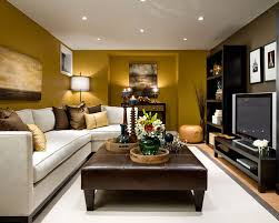 Basement Family Room Decorating Ideas Basement Remodeling Ideas - Houzz family room