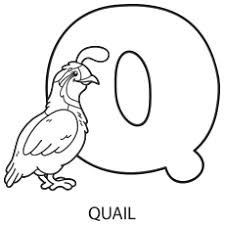 Alphabet Coloring Pages Your Toddler Will Love Coloring Pages Q