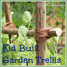 How To Make Trellis For Peas Kid Created Garden Trellis 3 Little Greenwoods