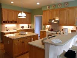 Professionally Painting Kitchen Cabinets How Much Does It Cost To Paint Kitchen Cabinets Bloomingcactus Me