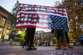 Michigans Flag Michigan Rallies Seek Unity After Election Trump Protested