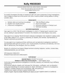 adjunct instructor resume sample resume examples for college instructors resume ixiplay free