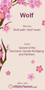 meaning of wolf wolf is a german form of names containing