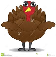 turkey drawings thanksgiving unhappy thanksgiving turkey bird stands alone royalty free stock