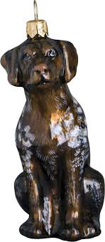 125 best german shorthaired pointers images on german