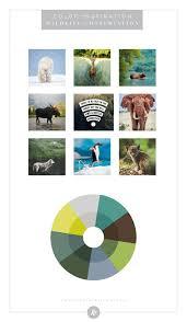 color palette inspiration by industry non profit blog humble