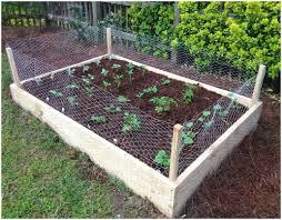 backyards backyard vegetable garden designs backyard