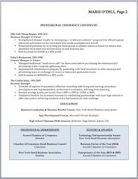 business resume templates business owner resume template well capture small 3 templates for